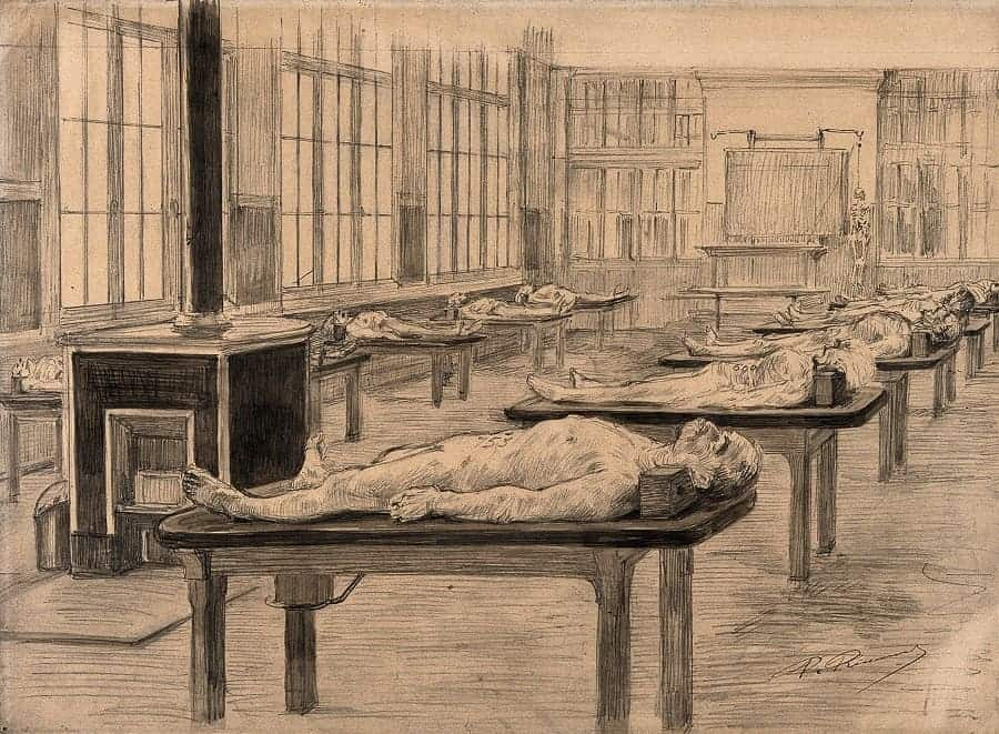 Interior of a dissecting room with cadavers laid out on tables. Drawing by Paul Ronard, late 19th - early 20th c. via Wellcome Images